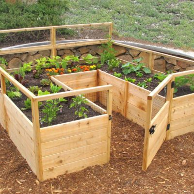 How To Protect Your Vegetable Garden